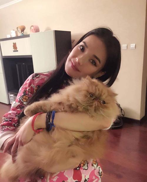 """Mèo """"hàng trăm triệu"""" làm thú cưng của người đẹp châu Á - 2"""