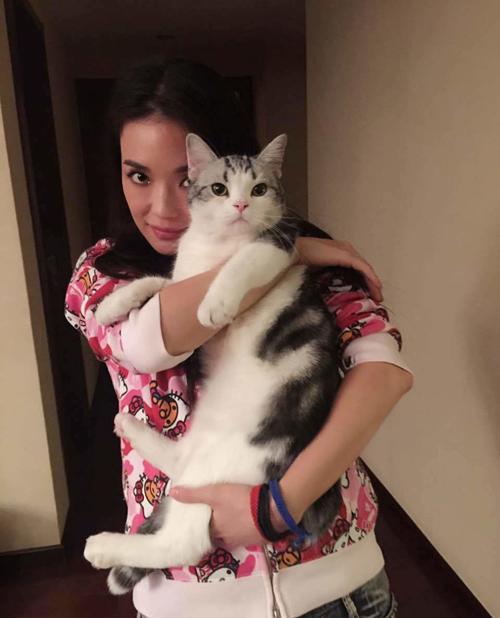 """Mèo """"hàng trăm triệu"""" làm thú cưng của người đẹp châu Á - 3"""