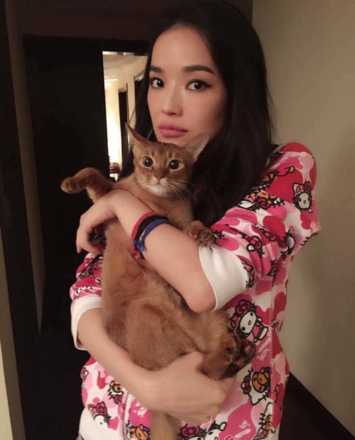 """Mèo """"hàng trăm triệu"""" làm thú cưng của người đẹp châu Á - 4"""