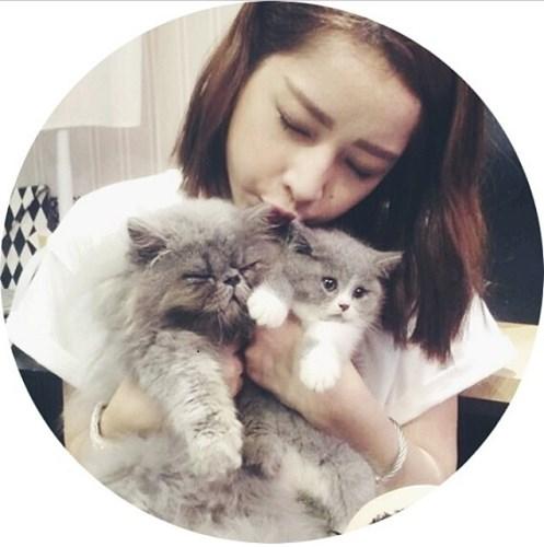 """Mèo """"hàng trăm triệu"""" làm thú cưng của người đẹp châu Á - 8"""