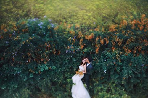 Mê mẩn bộ ảnh cưới giữa cánh đồng hoa tam giác mạch - 6