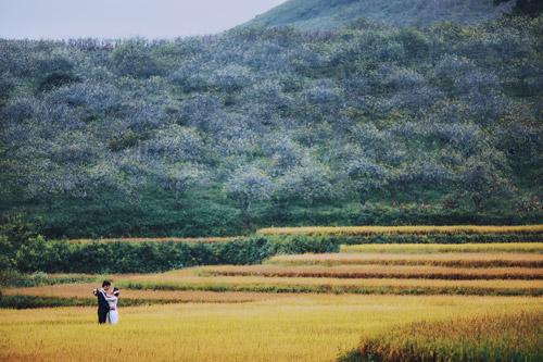 Mê mẩn bộ ảnh cưới giữa cánh đồng hoa tam giác mạch - 9