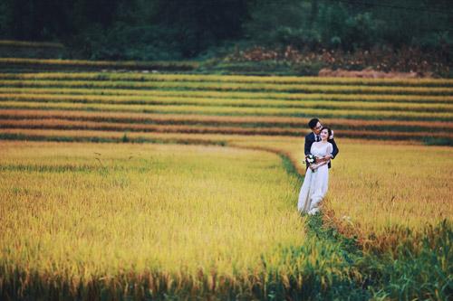 Mê mẩn bộ ảnh cưới giữa cánh đồng hoa tam giác mạch - 8