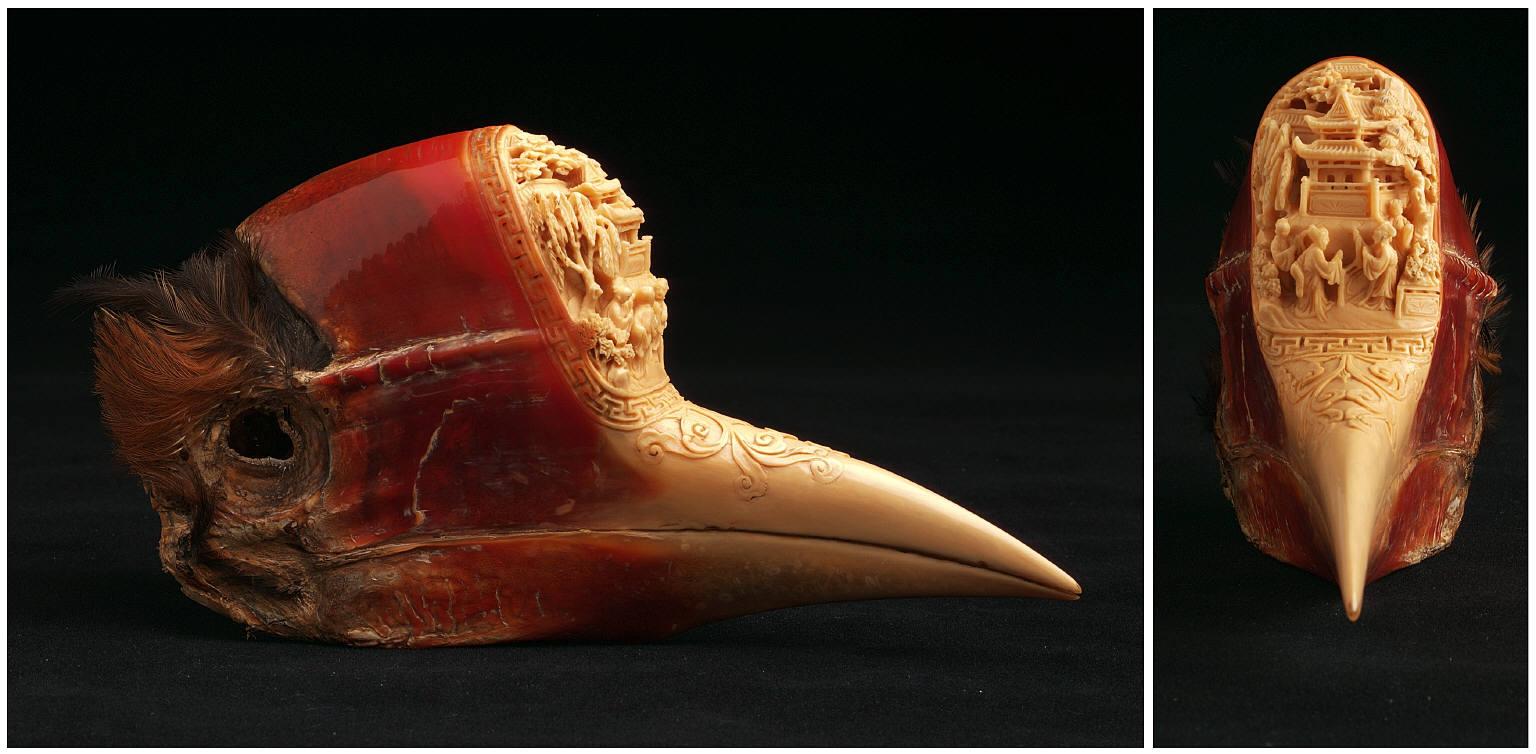 """Đại gia Trung Quốc và """"cơn khát"""" chim hồng hoàng - 4"""