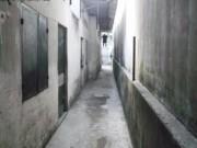 An ninh Xã hội - Tên cướp bị bắt do uống nhầm thuốc ngủ của nạn nhân