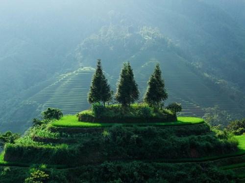 Vùng cao Việt Nam đẹp mê hồn trên báo Mỹ - 15