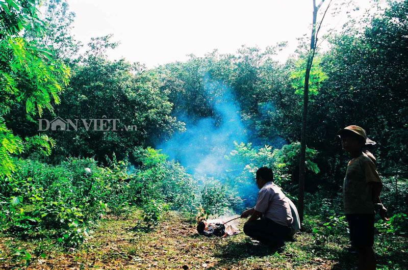 """Xuyên rừng tìm """"dấu chân"""" chàng Lía miền đất võ - 10"""