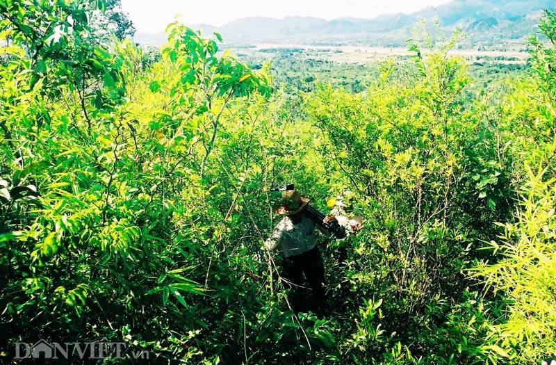 """Xuyên rừng tìm """"dấu chân"""" chàng Lía miền đất võ - 3"""