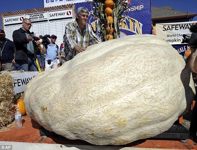 Kỷ lục thế giới: Quả bí ngô lớn nhất - 1