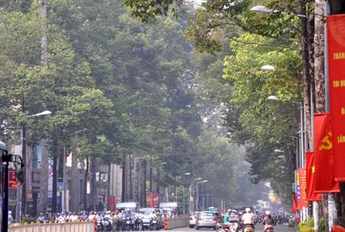 Gần trưa, Sài Gòn vẫn ẩn hiện trong sương mù - 2