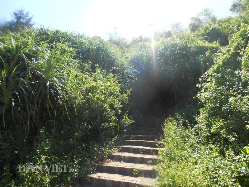 Địa đạo Vịnh Mốc- kỳ tích sống trong lòng đất Quảng Trị - 8