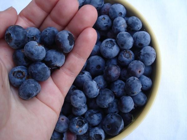 10 thực phẩm giúp giảm căng thẳng cho dân văn phòng - 10