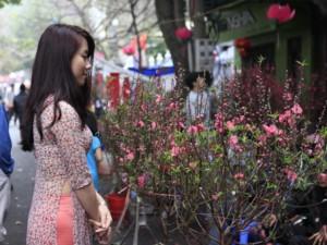 Tin tức Việt Nam - Lịch nghỉ Tết Nguyên đán Bính Thân 2016 dự kiến