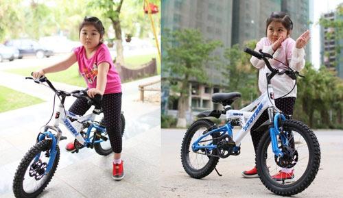 Cẩn trọng khi mua xe đạp không rõ nguồn gốc - 5