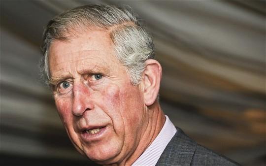 Thái tử Charles từ chối dùng tiệc với Chủ tịch Tập Cận Bình - 1