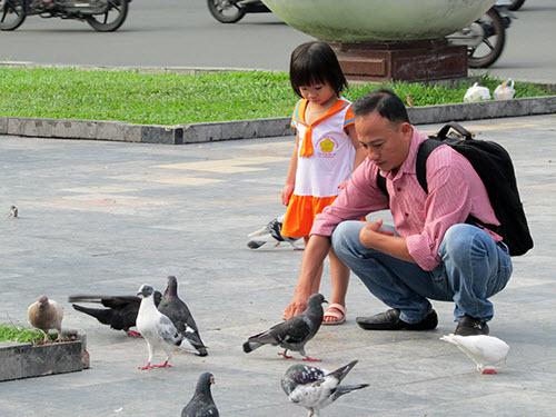 Video: Vui đùa cùng chim bồ câu giữa lòng Sài Gòn - 1