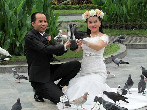 Video: Vui đùa cùng chim bồ câu giữa lòng Sài Gòn - 3