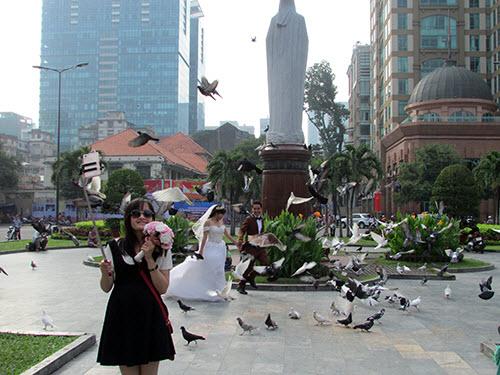 Video: Vui đùa cùng chim bồ câu giữa lòng Sài Gòn - 5