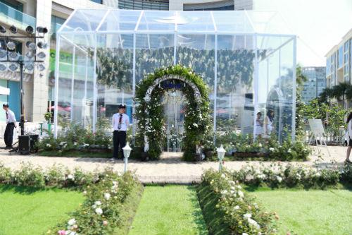 Bảo Anh mong chờ dạo bước tại vườn hồng lớn nhất Sài Gòn - 7