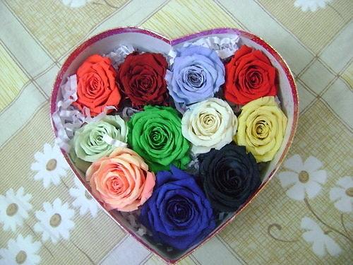 """Những loại hoa hồng khiến mọi phụ nữ ''thèm muốn"""" - 2"""