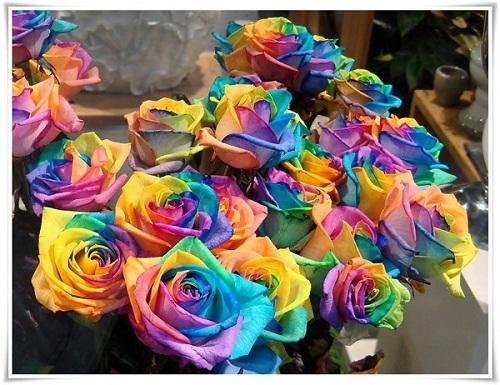 """Những loại hoa hồng khiến mọi phụ nữ ''thèm muốn"""" - 4"""