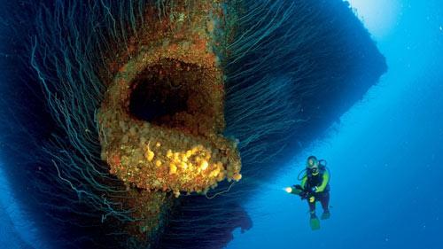 Khám phá hòn đảo nguy hiểm mang tên Bikini - 3