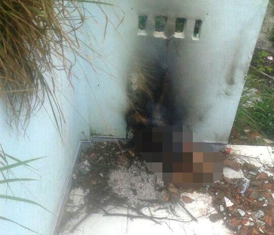 Cô gái bị cột tay, đốt cháy đen trong căn nhà hoang - 1