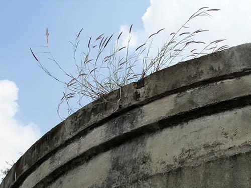 """Cận cảnh thủy đài khổng lồ sắp được """"hóa kiếp"""" ở Sài Gòn - 8"""