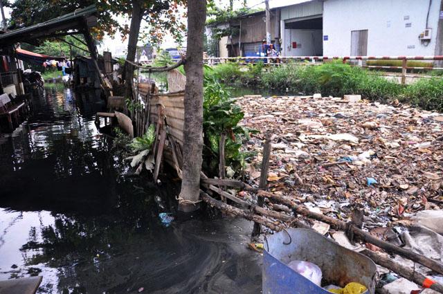 Ảnh: Sau mưa, Sài Gòn như miền Tây mùa nước nổi - 16