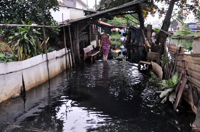 Ảnh: Sau mưa, Sài Gòn như miền Tây mùa nước nổi - 3