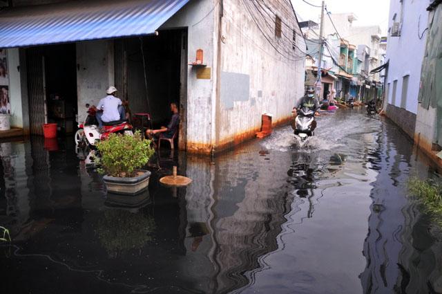 Ảnh: Sau mưa, Sài Gòn như miền Tây mùa nước nổi - 7