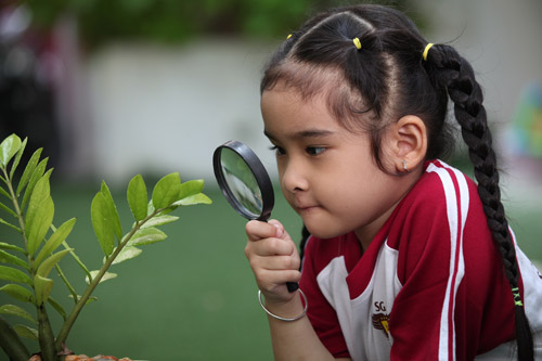 Kích hoạt tiềm năng trí tuệ trẻ với Phương án 0 tuổi - 3