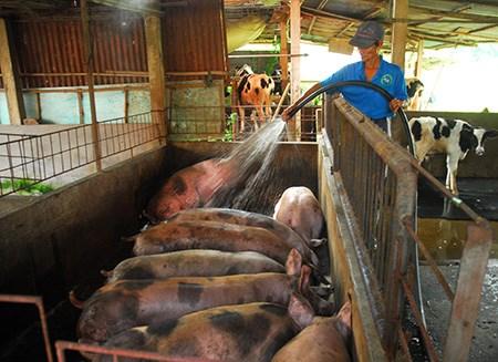 """Đưa tiến bộ công nghệ vào nông nghiệp để """"đọ sức"""" TPP - 1"""
