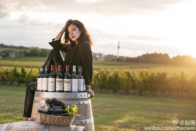 Khám phá trang trại rượu nho Pháp 97 tỉ của Triệu Vy - 8
