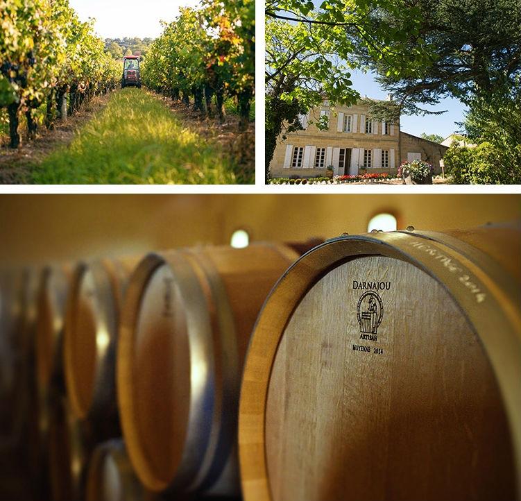 Khám phá trang trại rượu nho Pháp 97 tỉ của Triệu Vy - 13