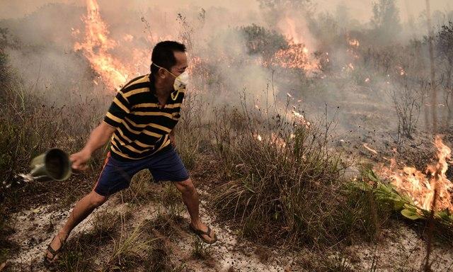 Ảnh: Cháy rừng tồi tệ ở Indonesia gây loang khói bụi mù mịt - 3