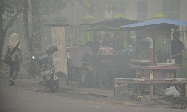 Ảnh: Cháy rừng tồi tệ ở Indonesia gây loang khói bụi mù mịt - 5