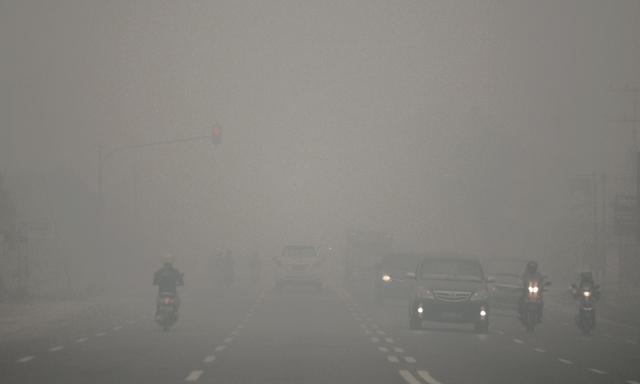 Ảnh: Cháy rừng tồi tệ ở Indonesia gây loang khói bụi mù mịt - 6