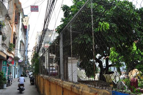 Ảnh: Những nghĩa địa lọt thỏm giữa phố phường Hà Nội - 12