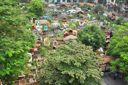 Ảnh: Những nghĩa địa lọt thỏm giữa phố phường Hà Nội - 9