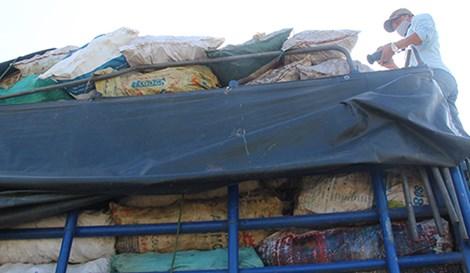 Xe tải chở hơn 9 tấn xương động vật có giòi - 1