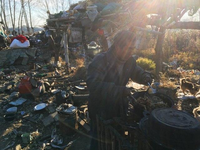 TQ: Ông lão vô gia cư sống cùng 40 chú chó hoang - 5