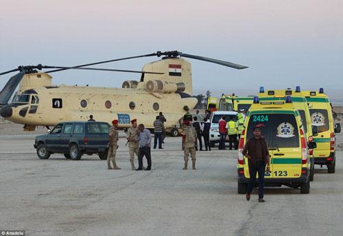 Hiện trường máy bay Nga chở 224 người rơi vỡ vụn - 9