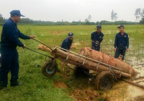 """Phát hiện quả bom """"khủng"""" nặng gần 1 tấn ở ruộng lúa - 1"""