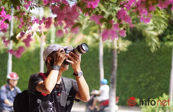 """Khách du lịch mê mẩn """"thành phố hoa giấy"""" Nha Trang - 12"""