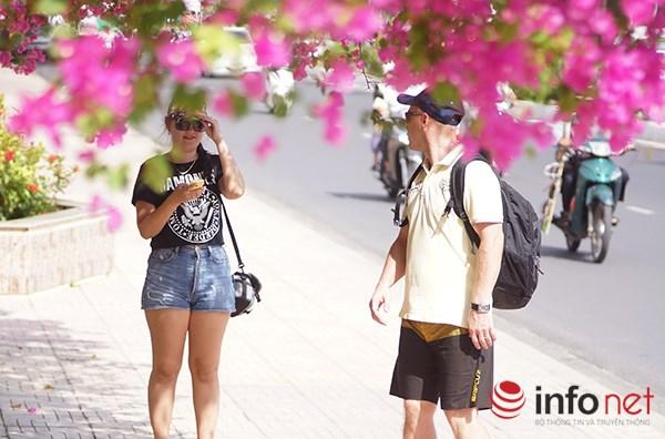 """Khách du lịch mê mẩn """"thành phố hoa giấy"""" Nha Trang - 3"""