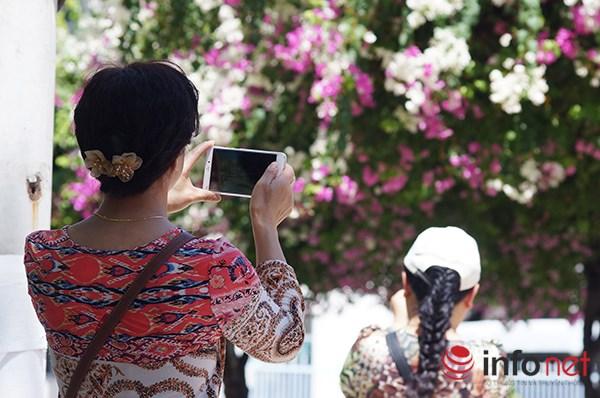 """Khách du lịch mê mẩn """"thành phố hoa giấy"""" Nha Trang - 9"""