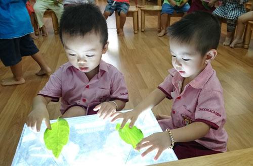 Giáo dục sớm là sự giáo dục đối với bộ não - 2