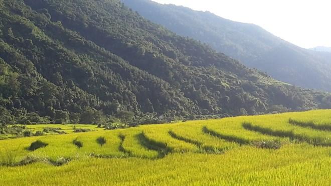 """Ngỡ ngàng """"Sa Pa ở Quảng Ninh"""" - 6"""