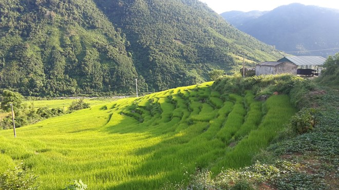 """Ngỡ ngàng """"Sa Pa ở Quảng Ninh"""" - 8"""